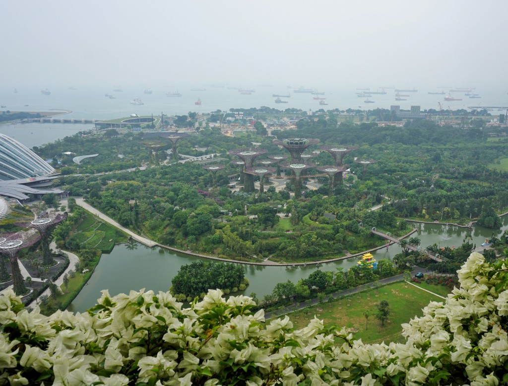 Marina Bay Sands'ten Gardens by the Bay